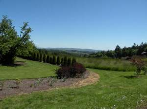 Biking in Oregon